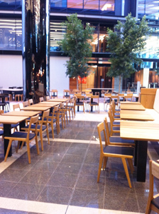 20130801-Tomoe Chairs - Natural 1_1.jpg