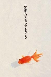 20150724-syochu.jpg